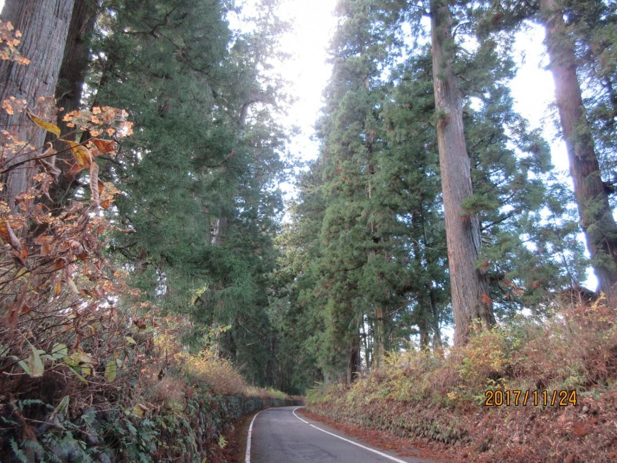 11月24日(金)徳次郎→大沢→今市へ 20.5km