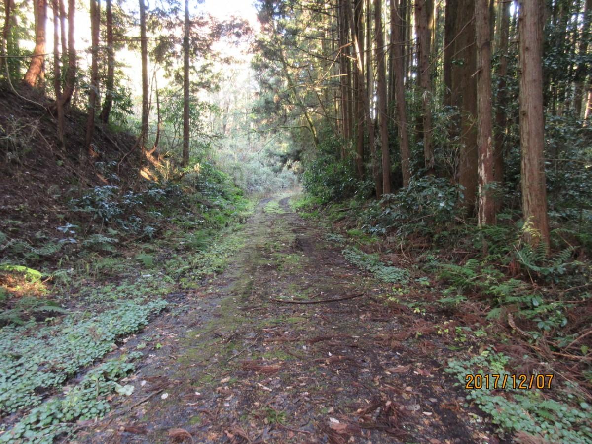12月7日(木)氏家→喜連川→佐久山へ 24.6km